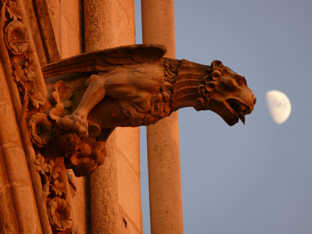 Gargoyle on Gothic cathedral in France